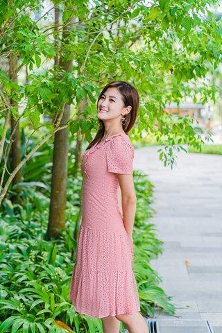 Flores Eyelet Dress In Powder Pink