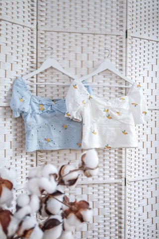 Polly Embroidery Eyelet Sleeve Top In Sky Blue