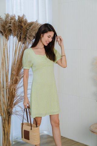 Happy Sunshine Gingham Dress In Apple Green